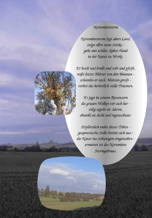 unser vogelhaus gedicht